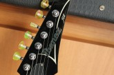 Ibanez Limited Edition Steve Vai Jem 20th Anniversary-8.jpg